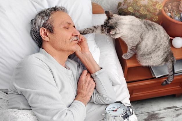 Katze weckt ihren besitzer, der im bett schläft