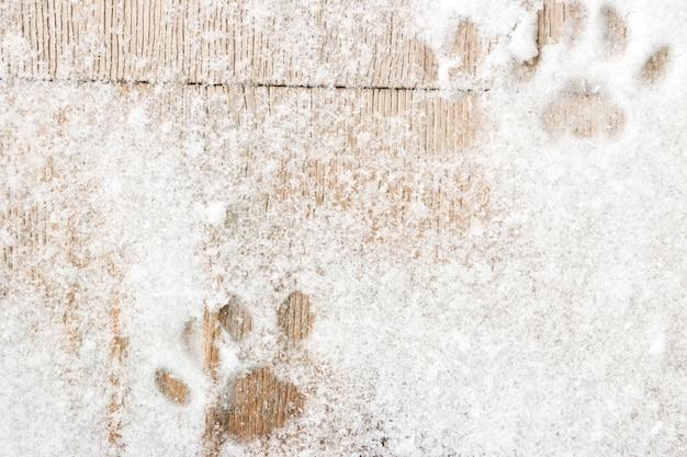 Katzenfußabdrücke auf dem hölzernen hintergrund mit schnee