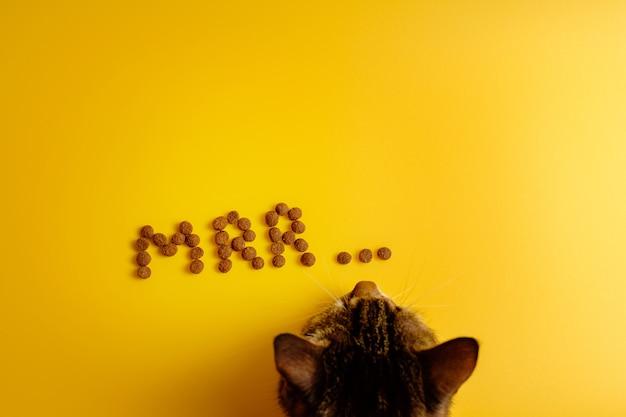 Katzenfutter auf gelbem hintergrund in wort des schnurrens der katze angelegt