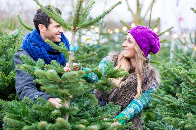 Kaufender weihnachtsbaum der frau und des mannes auf markt