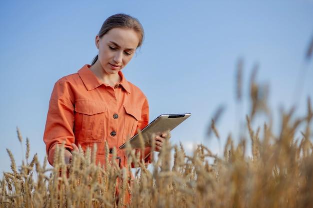 Kaukasischer technologe agronom der frau mit tablet-computer auf dem gebiet der weizenprüfung der qualität und des wachstums von pflanzen für die landwirtschaft. landwirtschafts- und erntekonzept.