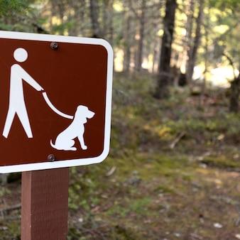 Keine hunde erlaubt unterzeichnen auf einer stange in einem wald, pemberton, pemberton-tal, britisch-columbia, kanada