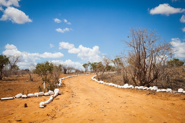 Kenia. blauer himmel auf dieser orangefarbenen straße inmitten der afrikanischen savana, tsavo east national park