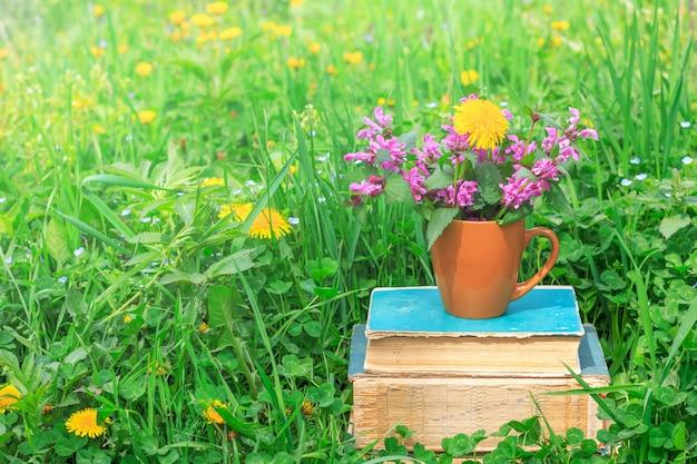Keramikbecher mit blühenden pflanzen auf einem stapel alter bücher in einer lichtung mit einem grünen klee