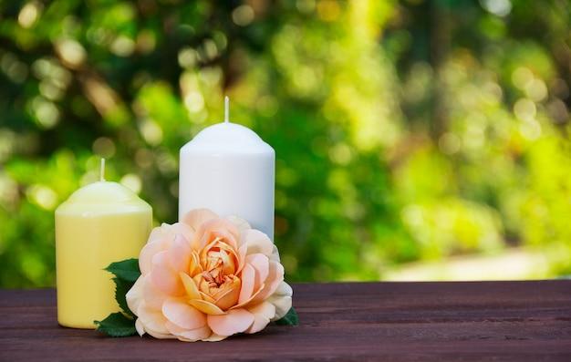 Kerzen und duftende rose auf grünem unscharfem hintergrund