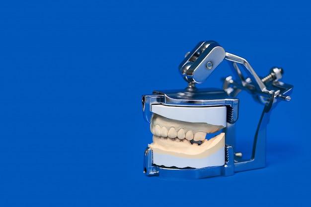 Kiefer warf in einem speziellen medizinischen gerät auf blauem hintergrund