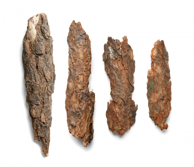 Kiefern-, zedern- oder eichenrindenstücke isoliert auf weißem hintergrund. natürliche gebrochene hölzerne gartenmulchchips draufsicht