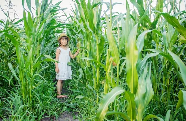Kind auf dem gebiet von mais. ein kleiner bauer. selektiver fokus.