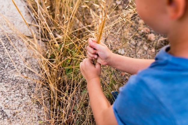Kind, das durch die landschaft geht und gras nimmt