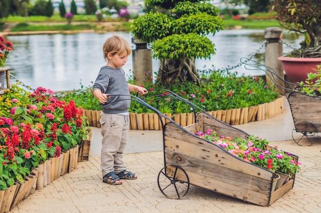 Kind, das radwagen im garten drückt