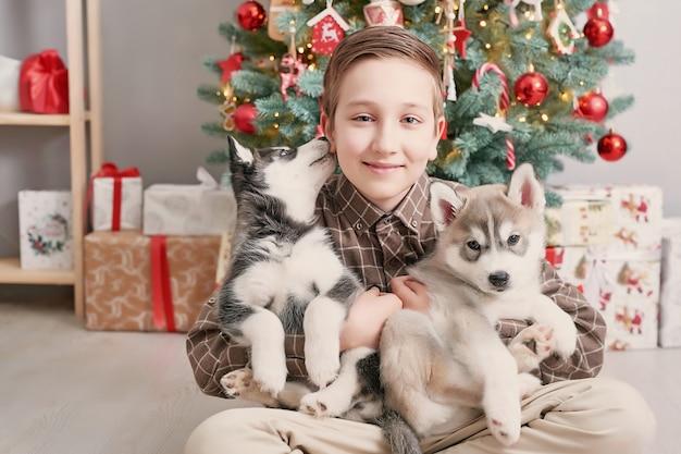 Kind junge mit hunden husky welpen und weihnachtsbaum.