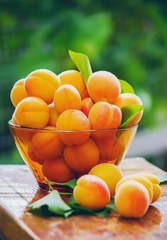 Kind mit aprikosen selektiver fokus essen und trinken.