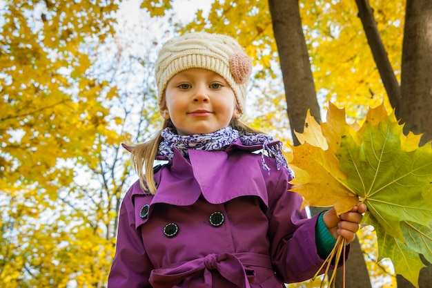 Kind mit gelben blättern ein strauß gelber blätter gefallene blätter