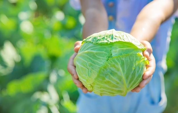 Kind mit kohl und brokkoli in den händen.