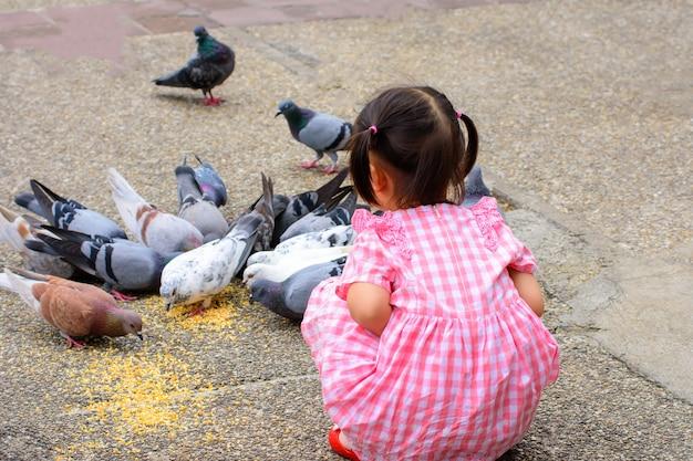 Kind sitzt und beobachtet vögel, die am tha phae gate chiang mai thailand essen