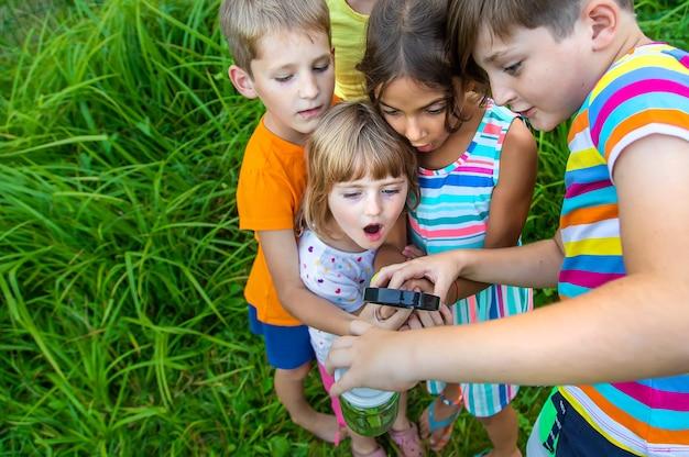 Kinder betrachten die natur mit einer lupe. selektiver fokus. natur.