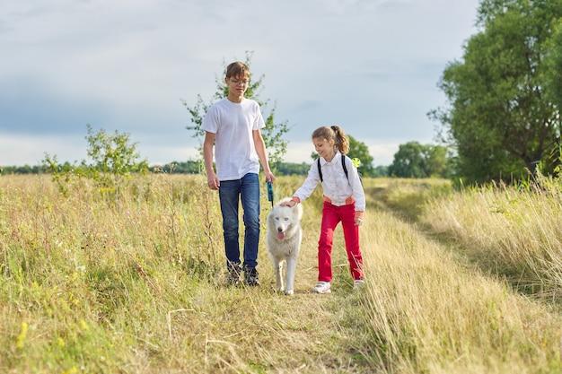 Kinder, die mit weißem hund in der wiese am herbsttag gehen