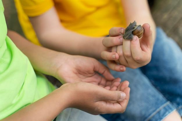 Kinder, die zusammen eine schnecke betrachten