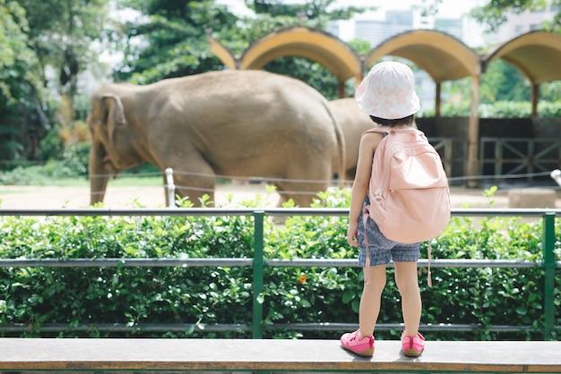 Kinder füttern in den sommerferien asiatische elefanten im tropischen safaripark. kinder beobachten tiere