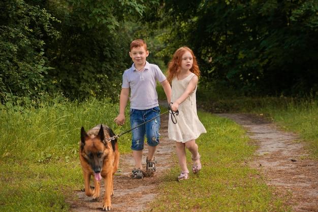 Kinder gehen mit dem hund im park spazieren