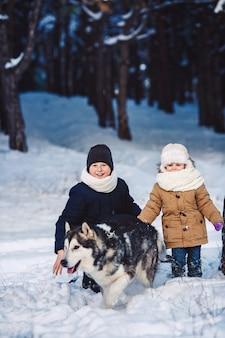 Kinder haben spaß daran, im winter mit ihrem hund im park zu spielen