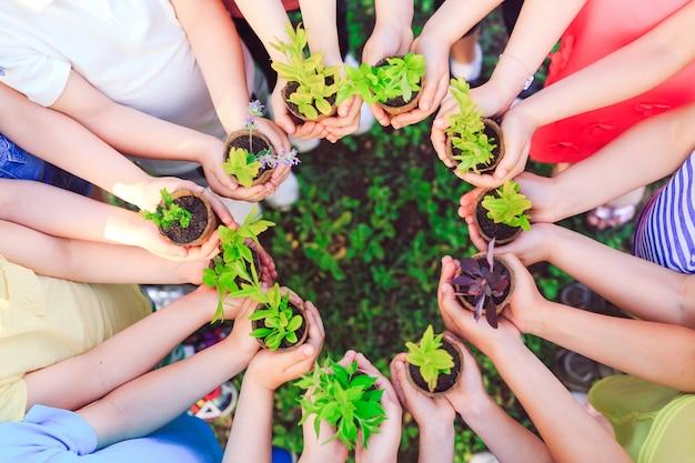 Kinder halten pflanzen in blumentöpfen