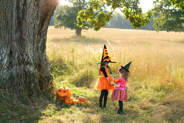 Kinder in karnevalskostümen spielen an halloween mit kürbissen auf einem feld unter einem großen baum