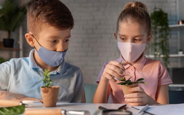 Kinder lernen über pflanzen mittlerer schuss
