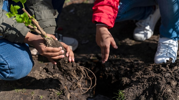 Kinder lernen, wie man einen baum pflanzt