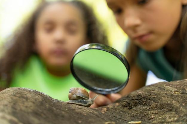 Kinder schauen zusammen auf eine schnecke