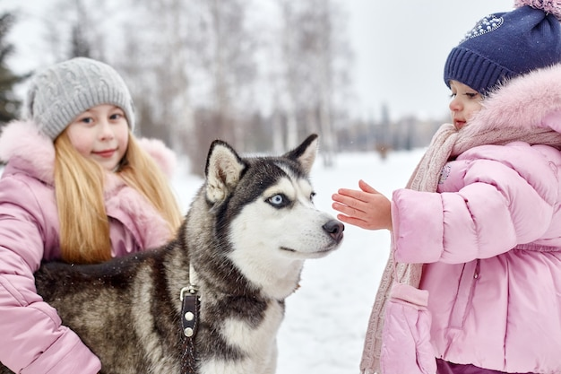 Kinder sitzen im schnee und streichelten hundehusky. kinder gehen im winter aus und spielen mit husky-hund. spaziergang im park im winter