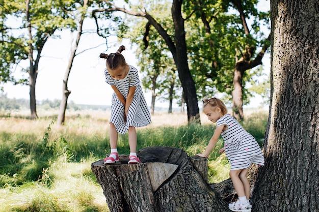 Kinder spielen im sommerpark und klettern auf bäume
