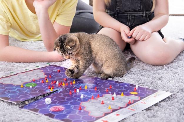 Kinder spielen mit einem britischen kleinen verspielten kätzchen zu hause auf dem teppich. ein kätzchen streut die chips eines brettspiels
