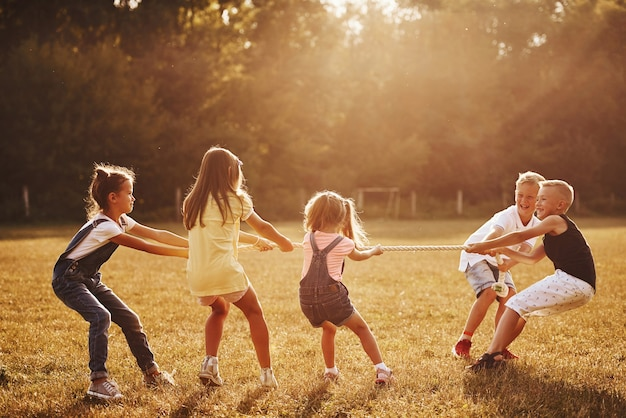 Kinder spielen tauziehen auf der schönen wiese am sonnigen tag.