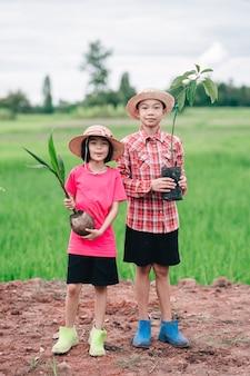 Kinderfamilie, die aussaat von orangenbäumen hält, um den baum in bio-gartenland zu pflanzen