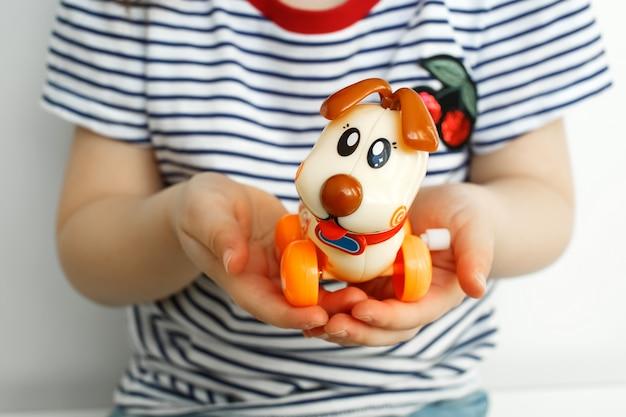 Kinderhände halten einen welpen. kind spielt mit einem welpen.