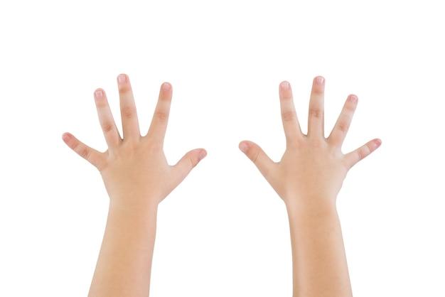 Kinderhände zeigen zehn finger lokalisiert auf weißem hintergrund. kinderhände sind erhoben. auf weiß isoliert.