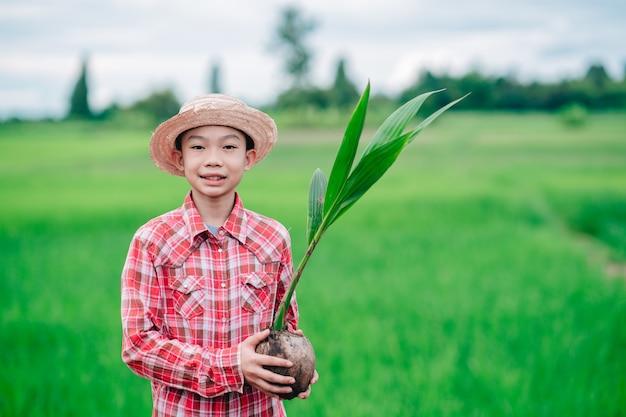 Kinderjunge, der die aussaat des orangenbaums zum pflanzen des baumes in bio-garten-ackerland hält