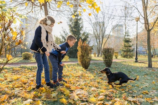 Kinderjunge und -mädchen, die mit dackelhund in einem sonnigen herbstpark spielen