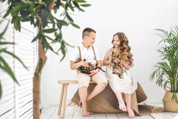 Kinderjungen und -mädchen sind schön und glücklich mit kleinen süßen bengal-kätzchen zusammen