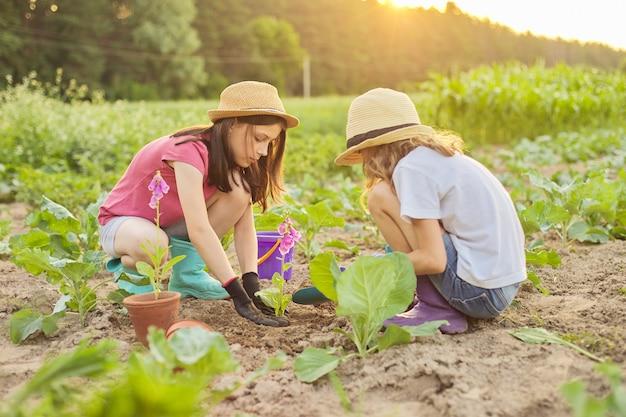 Kindermädchen, die blühende topfpflanze in boden pflanzen
