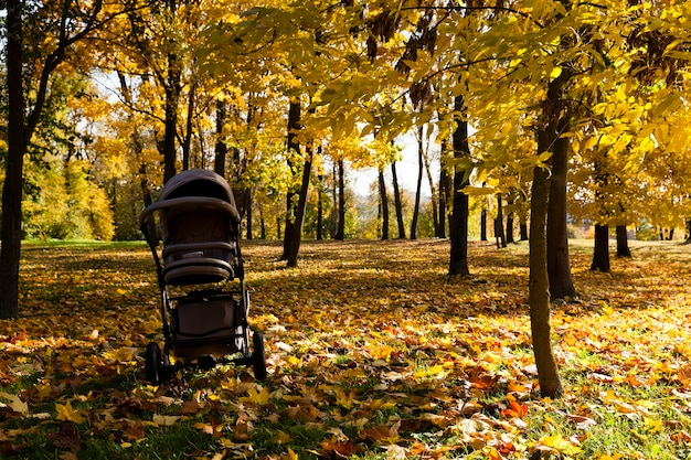 Kinderwagen im park im herbstkinderwagen