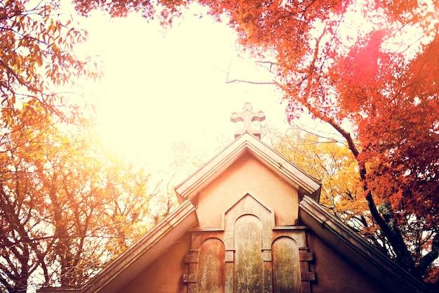 Kirche christbaum natürlich schön