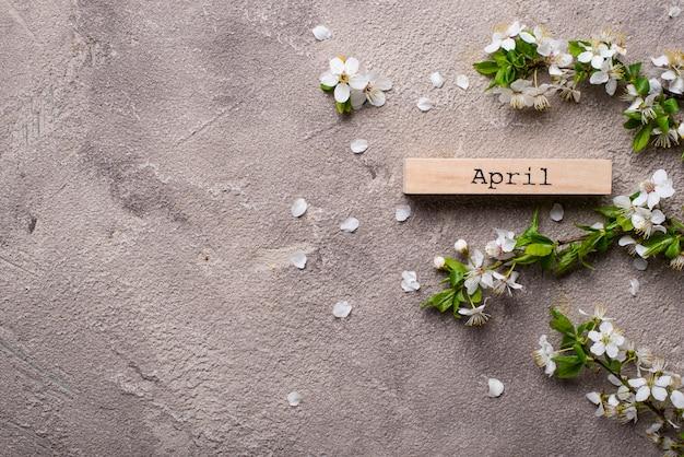 Kirschblüte auf beige hintergrund