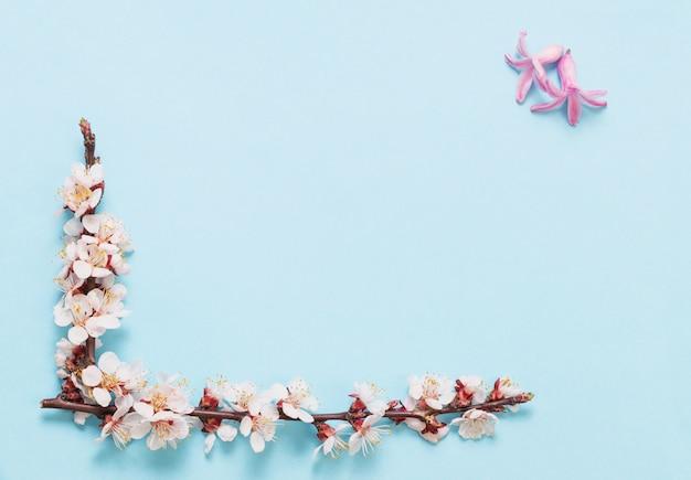 Kirschblumen auf blauem papierhintergrund