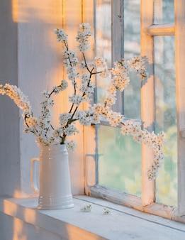 Kirschblumen im weißen krug auf fensterbank bei sonnenuntergang
