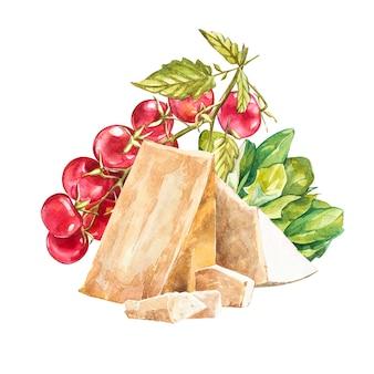 Kirschtomaten auf der rebe mit parmesankäseparmesankäse. aquarell hand gezeichnete abbildung. isoliert