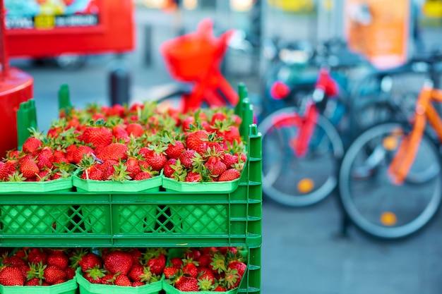Kisten mit frischen reifen erdbeeren in den regalen der lebensmittelgeschäfte.