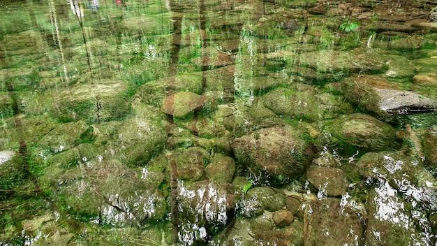 Klarer fluss mit grünen felsen und bäumen über der wasseroberfläche, die natur hinterlässt schatten über dem fluss im dunklen wald