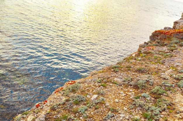 Klarer himmel über einem blauen meer am strand cliffs hintergrund